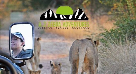 A 2 Zebra Adventures Final