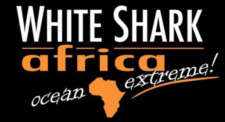 White Shark Africa 768x419